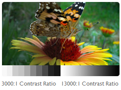Ultra-High Contrast Ratio