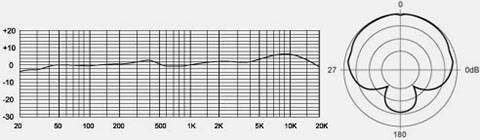 Frequency curve & Polar pattern