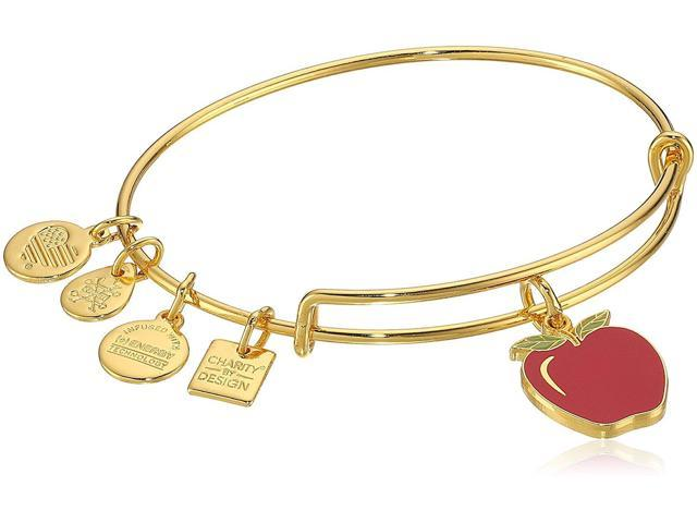 08a74fba80b Alex and Ani Charity By Design Apple EWB Bangle Bracelet - CBD17APSG