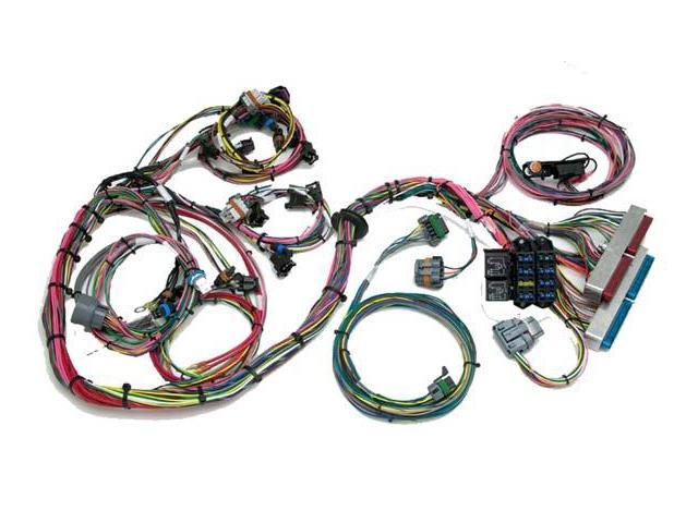 Admirable Painless 60522 Gm Ls1 Wiring Harness Std Length W Throttle By Wire Wiring Digital Resources Aeocykbiperorg