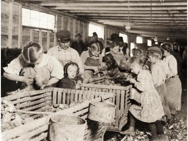 Hine Oyster Shuckers 1911 Nyoung Boys And Girls Working Alongside