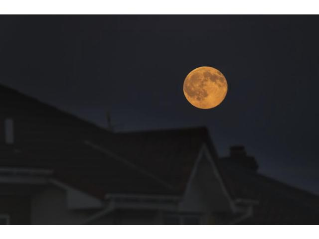Full harvest moon glowing in the night sky over houses South Shields Tyne  and Wear England Poster Print by John Short Design Pics (17 x 11) -
