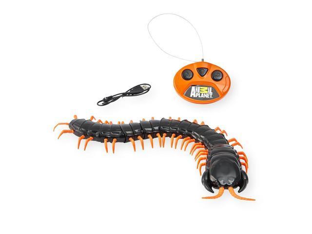 Animal Planet Giant Radio Control Centipede - Newegg com
