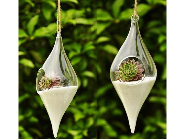 Hanging Terrarium Hydroponic Plant Flower Hanging Vase Garden
