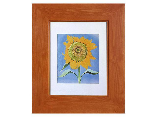 13x16 Cinnamon Picture Frame Medicine Cabinet, A Recessed Concealed  Medicine Cabinet That You Decorate Yourself