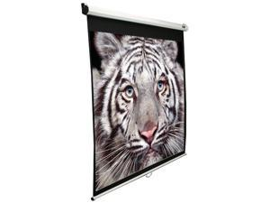 """Elitescreens 99"""" Standard(1:1) Manual Manual Ceiling/Wall Mount Manual Pull Down Projection Screen (99"""" 1:1 AR) (MaxWhite) M99NWS1"""