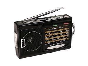 qfx r39 am/fm/sw 10 band radio with flashlight and usb/tf player