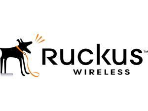 RUCKUS WIRELESS Wireless AP - Newegg com