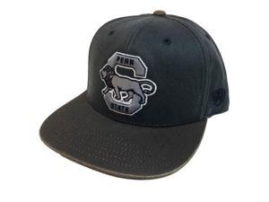db57a3fff35 Penn State Nittany Lions TOW Two-Tone