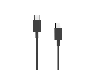 USB-C to USB-C Cable (3.3ft)
