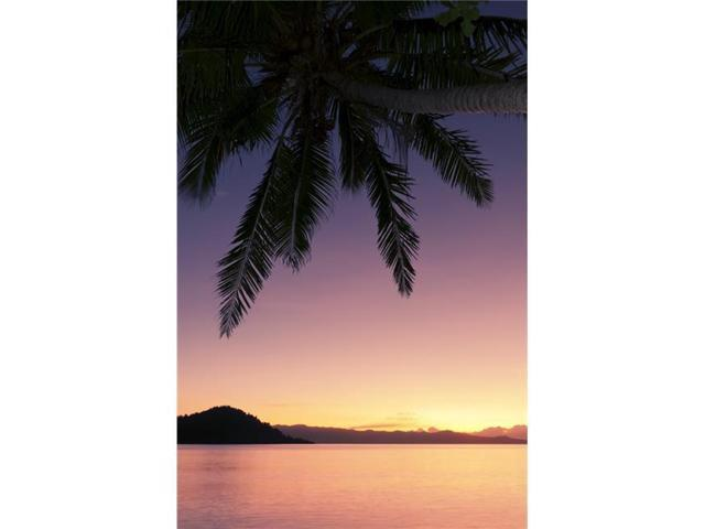 Design Pics DPI2087139 Fiji Matangi Private Island Resort Sunset Glow Over Ocean Poster Print, 11 x 17 (Toys & Games Toys Educational Toys) photo