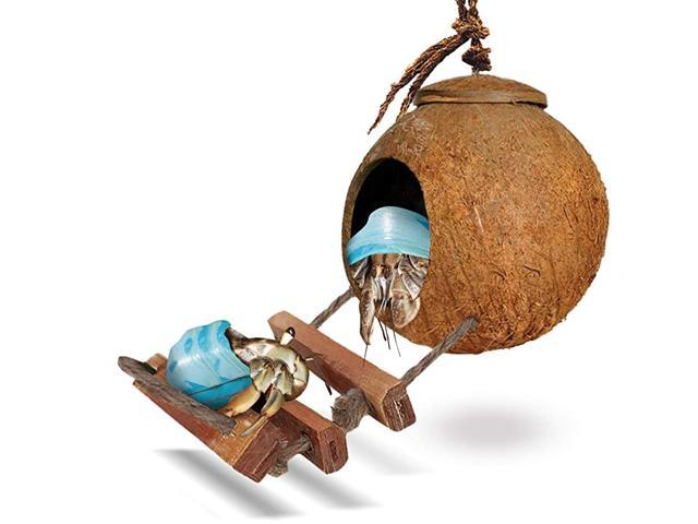 Hermit Crab Coco Den with Ladder Nesting Home Hide Mini Condo for Crustaceans Coconut Texture Provide Food for Pets Raw Coconut Husk Hide Durable. (Hardware Tools) photo