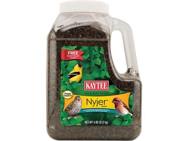 Kaytee Nyjer Songbird Wild Bird Food Thistle Seed 4.9 lb. - Case Of: 1; (071859930404 Home & Garden Lawn & Garden Outdoor Living) photo