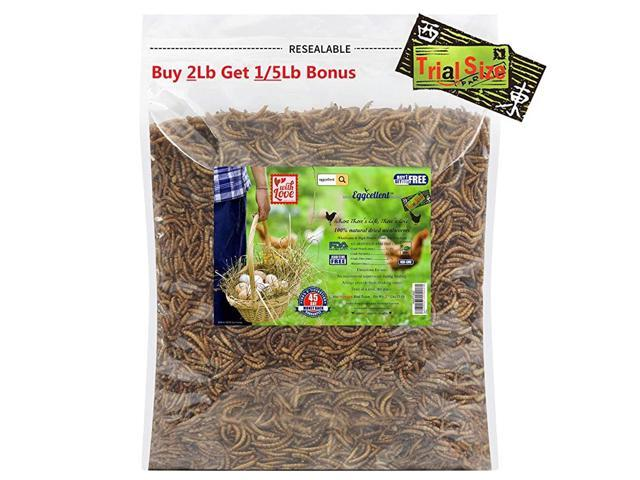 11Lbs Natural High Protein Dried Mealworms Optimal Treats for Chickens Wild Birds 176 Ounce (Home & Garden Kitchen & Dining Kitchen Appliances Outdoor Grills) photo