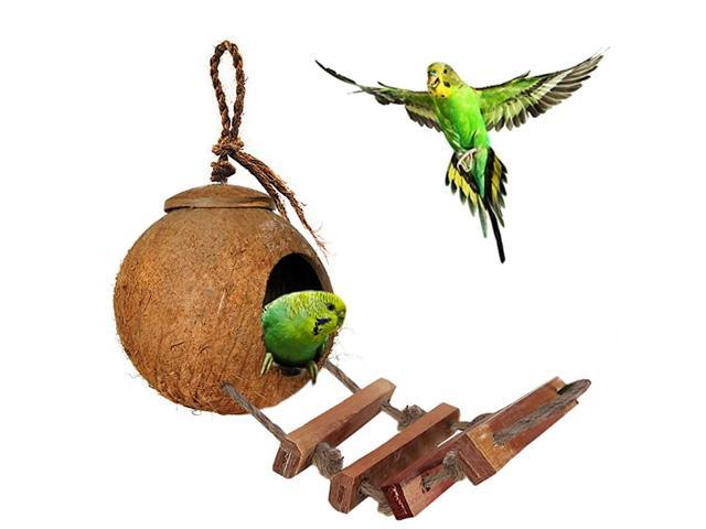 Bird House with Ladder Nesting Home and Bird Feeder Mini Condo for Avians Coco Texture Encourage Foot and Beak Exercise 100 Raw Coconut Husk. (Hardware Tools) photo