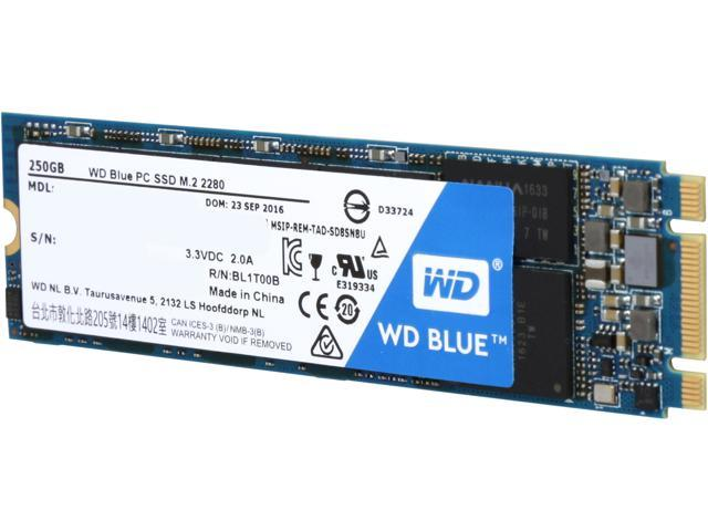 Wd blue m2 250gb internal ssd solid state drive sata 6gbs wd blue m2 250gb internal ssd solid state drive sata 6gbs publicscrutiny Image collections
