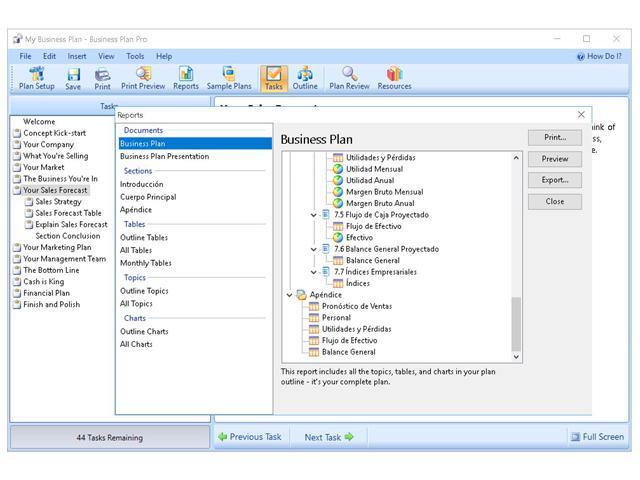 Individual software business plan maker