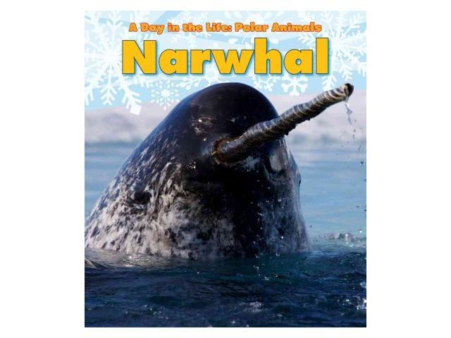 Narwhal A Day in the Life: Polar Animals: Heinemann Read and Learn: Level K Marsico, Katie