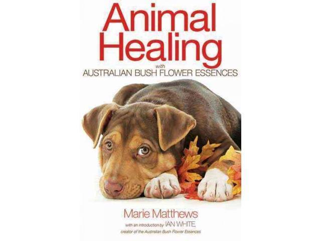 Animal healing with australian bush flower essences new newegg animal healing with australian bush flower essences new matthews marie white ian mightylinksfo