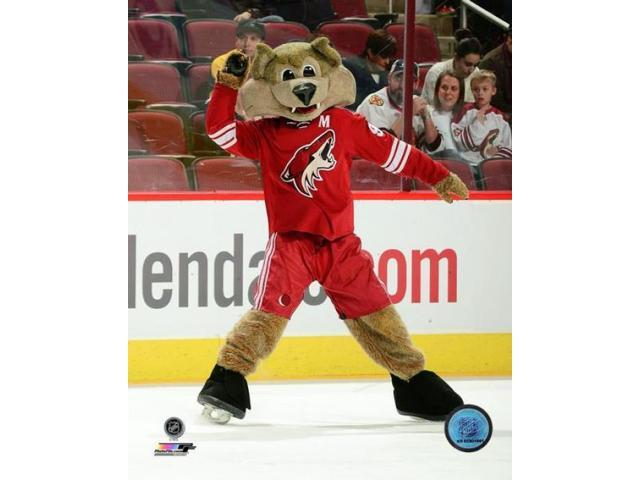 Howler the Phoenix Coyotes Mascot Photo Print (8 x 10) - Newegg com
