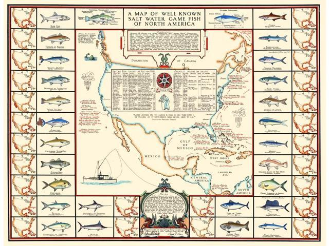 A map of well know salt water game fish of North America published in 1935  Poster Print by Bishop & Sims (18 x 24) - Newegg.com