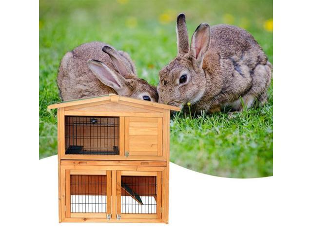 Life &   Living - Pet Supplies