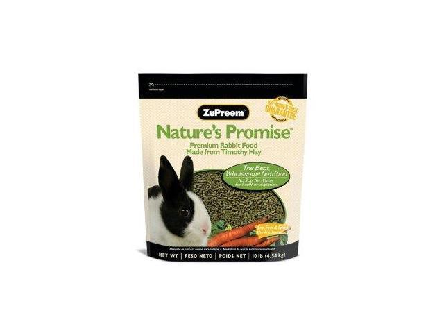 Adult rabbit food eats, fit naked fanny