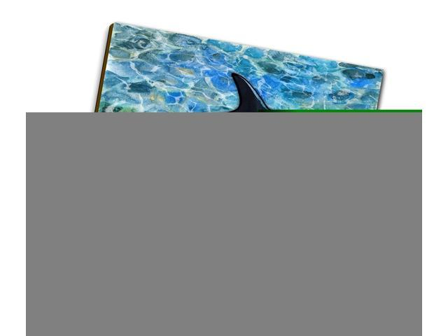 Triple Carolines Treasures Killer Whale Orca Wall Hook