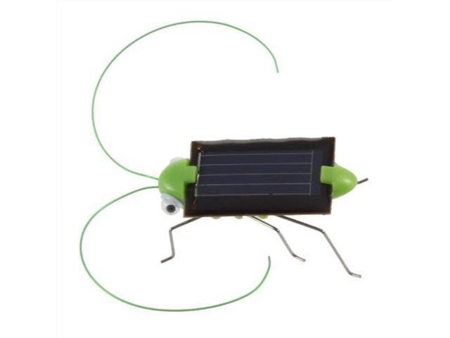 THZY New Solar Powered Grasshopper  Just Place in the Sun and Watch it's  Legs Jiggle - Newegg com