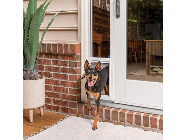 PetSafe Sliding Glass Cat and Dog Door Insert - Great for ...