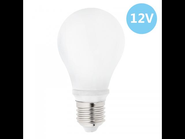 A19 Led Bulb 60 Watt Equivalent Globe Bulb 12v Dc