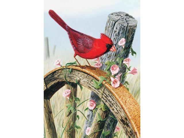 Briarwood Lane Cardinal Glory Spring Garden Flag Floral Birds 12.5 x 18