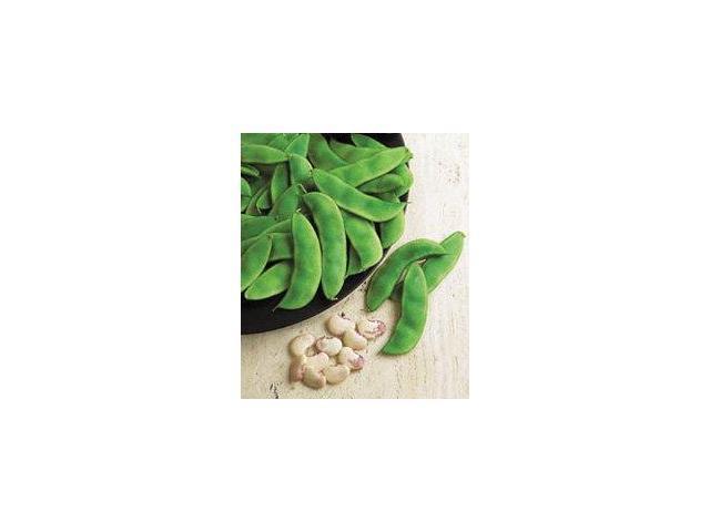 The Dirty Gardener Florida Butter Speckled Pole Lima Beans - Newegg com