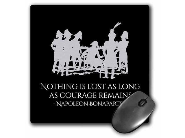 ghdonat.com Napoleon Universal Replacement Decal Home & Kitchen Stoves