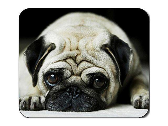Cute Pug Dog Puppy Large Mousepad Mouse Pad Great Gift Idea