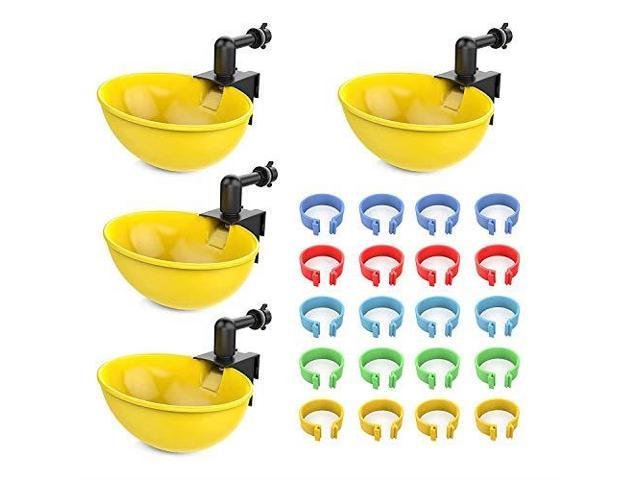 Lil Clucker 4 Large Automatic Chicken Waterer Cups amp 20 Leg Bands 34quot  Assorted Colors | Our Auto Poultry Drinker is Also Perfect for Ducks Geese