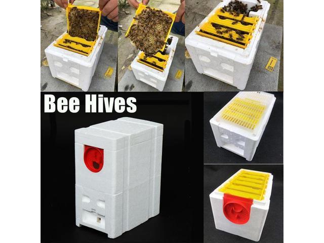 Harvest Bee Hive Beekeeping King Box Foam Frames Pollination Box Beekeeping Kits