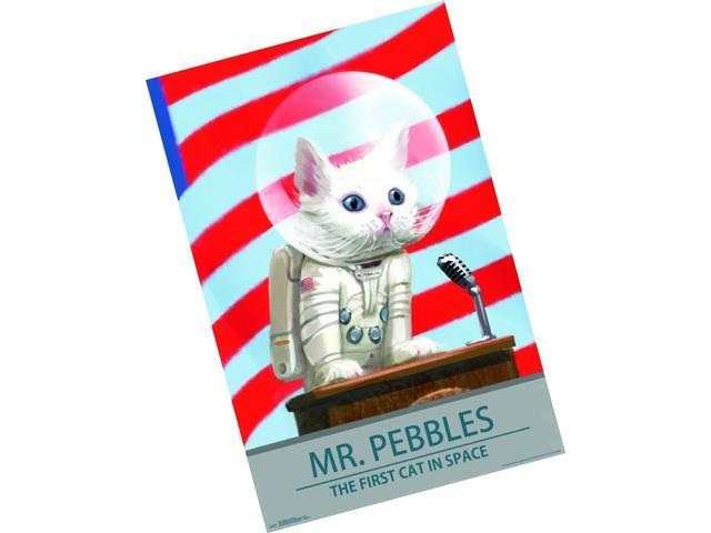 Trends International Fallout 4-Mr  Pebbles Premium Wall Poster, 22 375