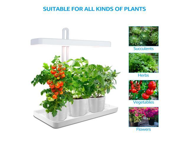 Torchstar Indoor Garden Kit Herb Kitchen Garden Grow Light Auto Timer Function Height Adjustable Cri 95 Real Color For Plant Enthusiasts Rosemary Ornamental Diy Gift Pots Plants Not Included Grow Lights