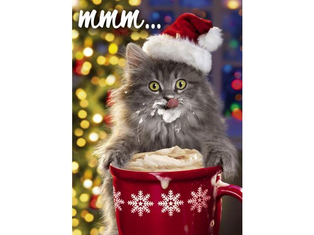 Kitten Christmas Cards.Avanti Press 32547 Christmas Cards Kitten And Cocoa 100 Count Value Pack Newegg Com