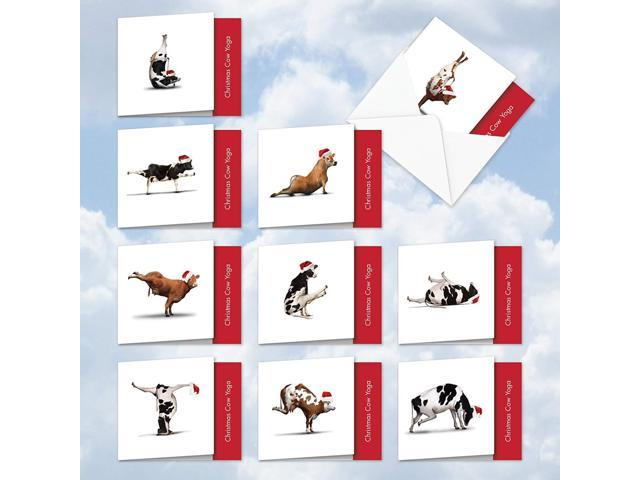 Christmas Cow.Mq6545xsb B1x10 Christmas Cow Yoga 10 Assorted Set Of Blank Square Top Note Cards Featuring Fun And Flexible Christmas Cows Perfecting Various Yoga