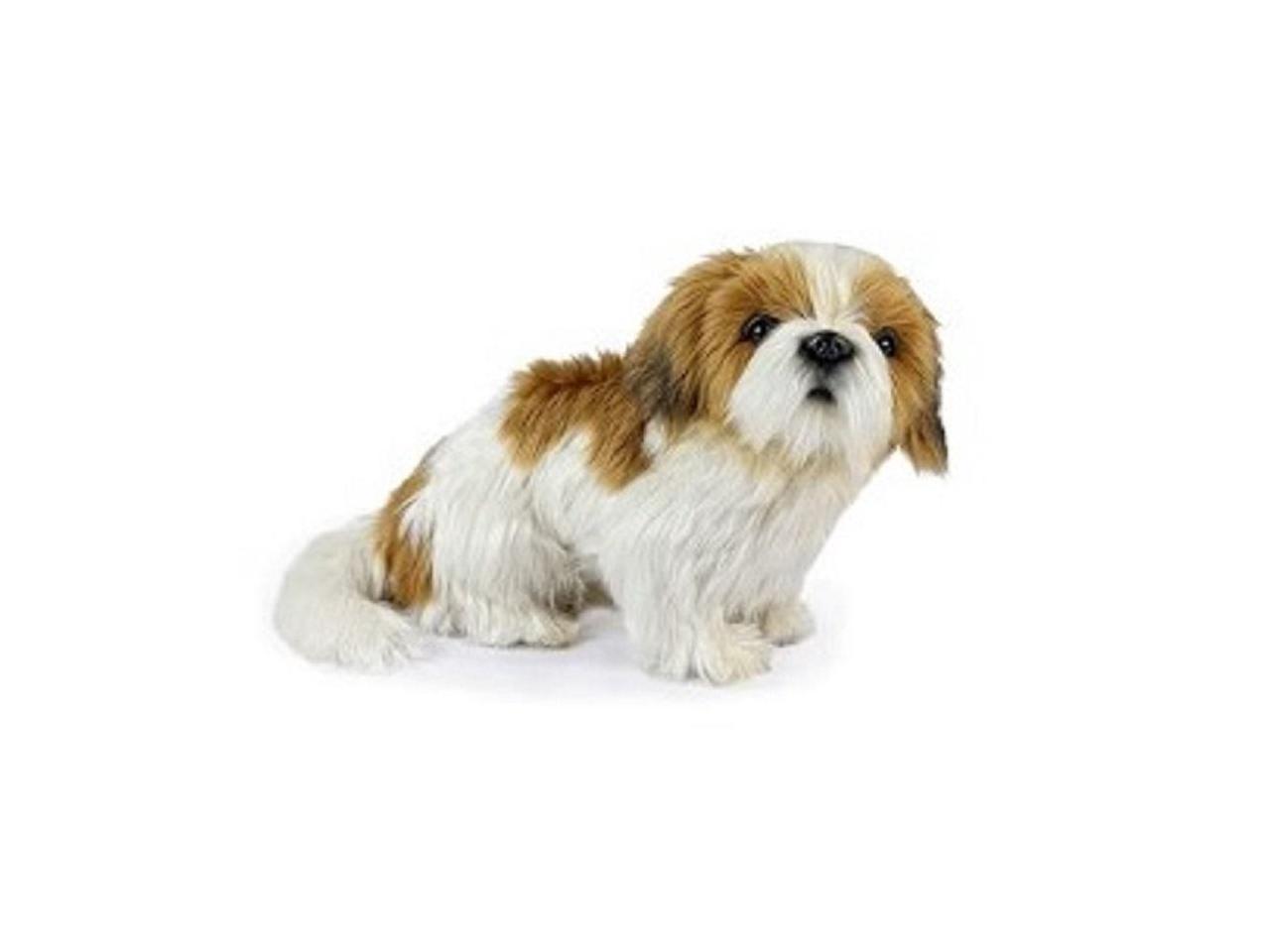 Set Of Dog Stuffed Animals, Set Of 3 Handcrafted Shih Tzu Dog Stuffed Animals 11 75 Newegg Com