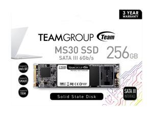 Team Group MS30 M.2 2280 256GB SATA III TLC Internal Solid State Drive (SSD) TM8PS7256G0C101