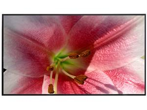 """Elite Screens Aeon AR100WH2 Fixed Frame Projection Screen - 100"""" - 16:9 - Wall Mount"""