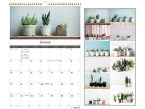 12-Month Wall Calendar, 12 x 17, Succulent Plants, 2021 C173121