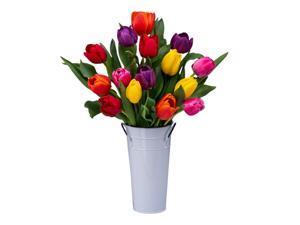 Stargazer Barn - 15 Rainbow Tulips with Vase