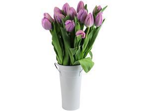 Stargazer Barn -15 Purple Tulips with Vase