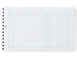 Wilson Jones 758-50 Extra Sheets for Six-Ring Ledger Binder, 100/Pack