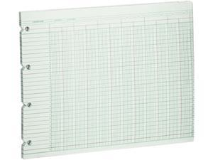 Wilson Jones G10-20 Accounting Sheets, 20 Column, 9-1/4 x 11-7/8, 100 Loose Sheets/Pack, Green