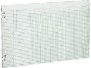 Wilson Jones G50-12 Accounting Sheets, 12 Columns, 11 x 17, 100 Loose Sheets/Pack, Green